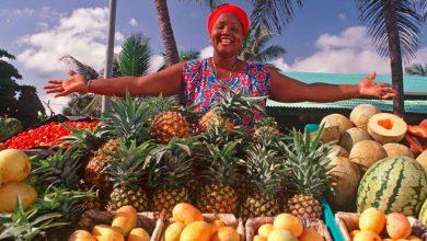 اقامت کوتاه مدت و ویزای توریستی دومینیکا
