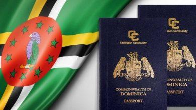 راه های مهاجرت به دومینیکا