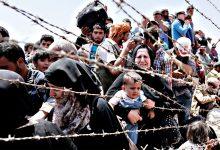 پناهندگان نروژ