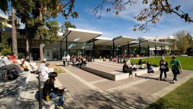 بهترین دانشگاه های نیوزلند